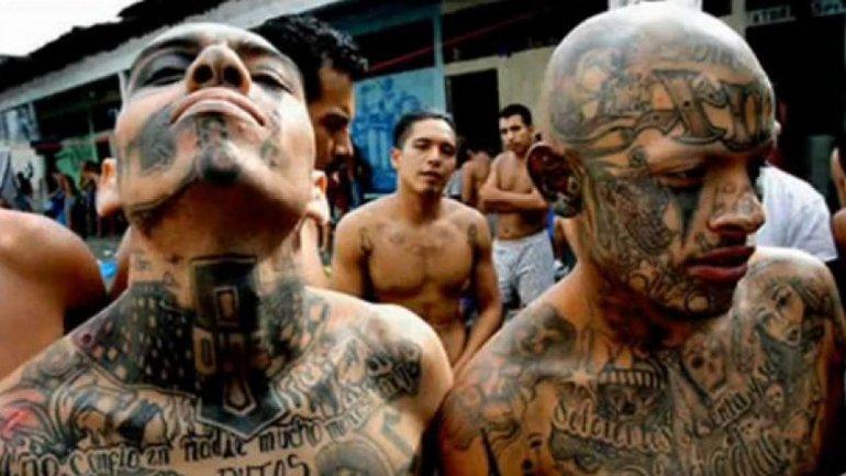historia criminal pandilla mexicana: