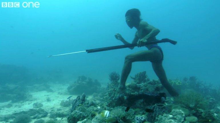 Hombre que camina sobre el fondo del mar para cazar taringa - Fotos fondo del mar ...