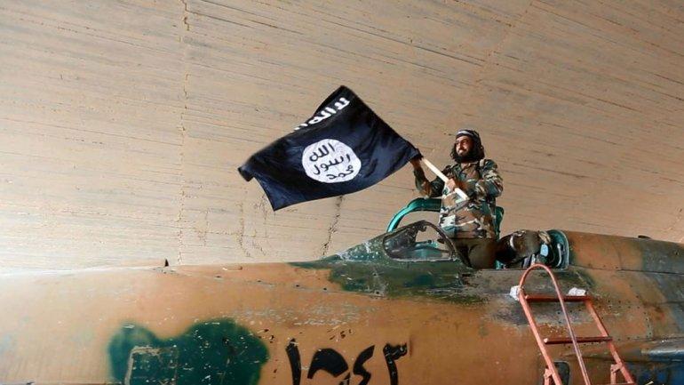 Terroristas de la filial de Al Qaeda en Siria se acercan a Israel: tomaron un paso fronterizo