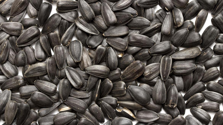 Semillas de girasol. Comer un cuarto de taza por día aporta la mitad del magnesio requerido por el cuerpo. Es fundamental para fortificar los huesos y relajar los músculos
