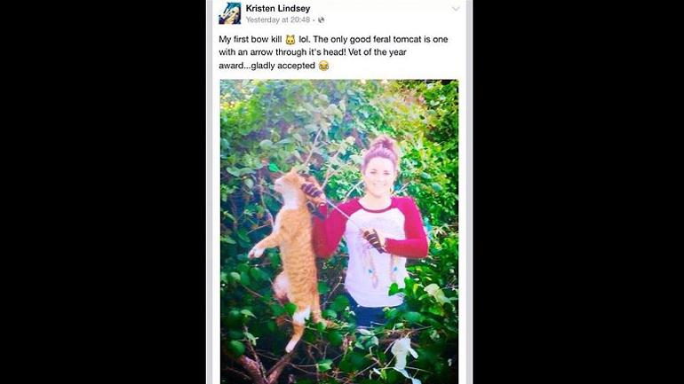 Resultado de imagen de veterinaria asesina de gatos