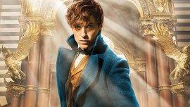 Eddie Redmayne en Animales fantásticos y dónde encontrarlos, la precuela de Harry Potter