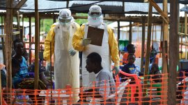 El virus del ébola causó alrededor de 4.000 muertes en el país