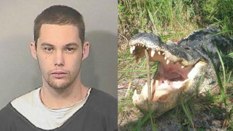 Matthew Riggins murió al ser devorado por un cocodrilo