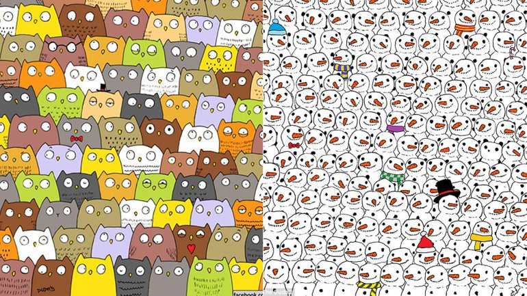 Los desafíos del gato y del panda, por el dibujanteGergely Dudás