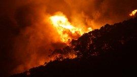El voraz incendio destruyó 116 viviendas