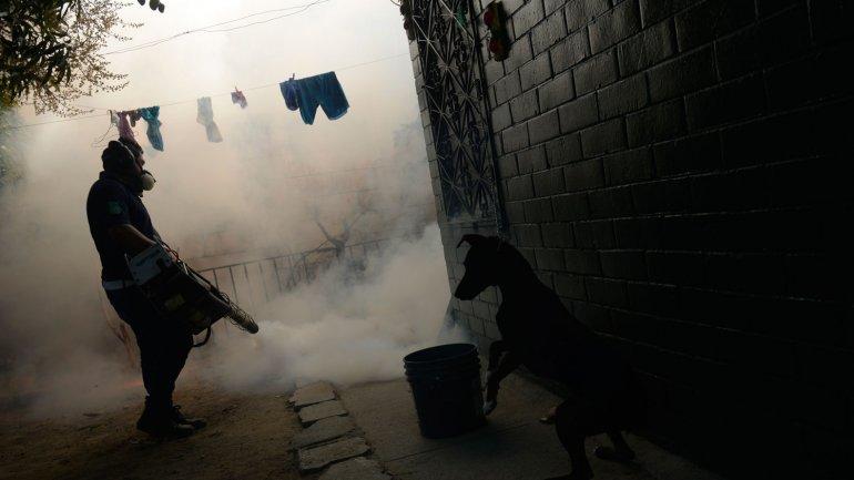 En El Salvador se realizaron fumigaciones y se pidió a la población que no se embaracen hasta 2017