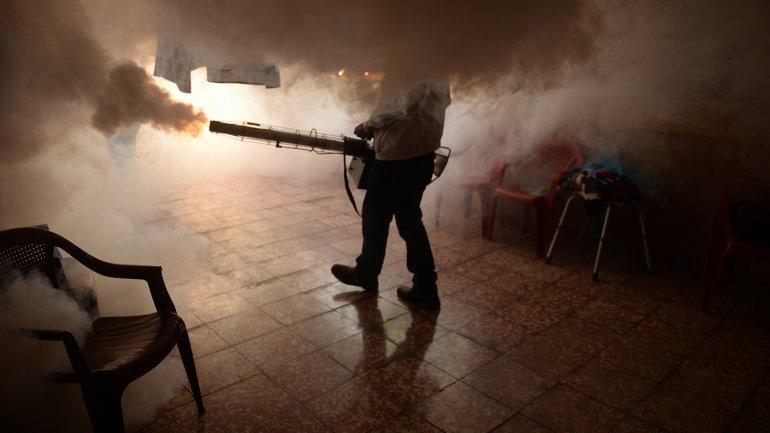 Llegó el primer caso de zika a China