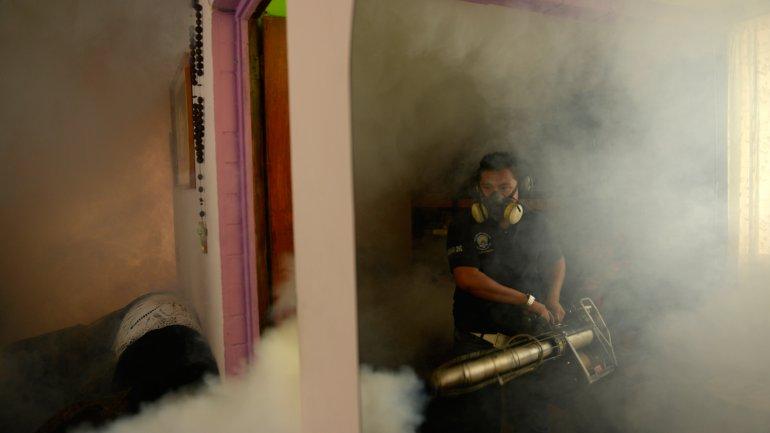 El virus del zika se propagó en América Latina y el Caribe