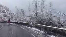 Varias zonas del país se vieron cubiertas de nieve