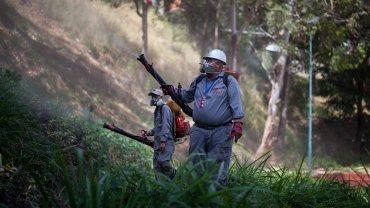 Las fumigaciones en Venezuela