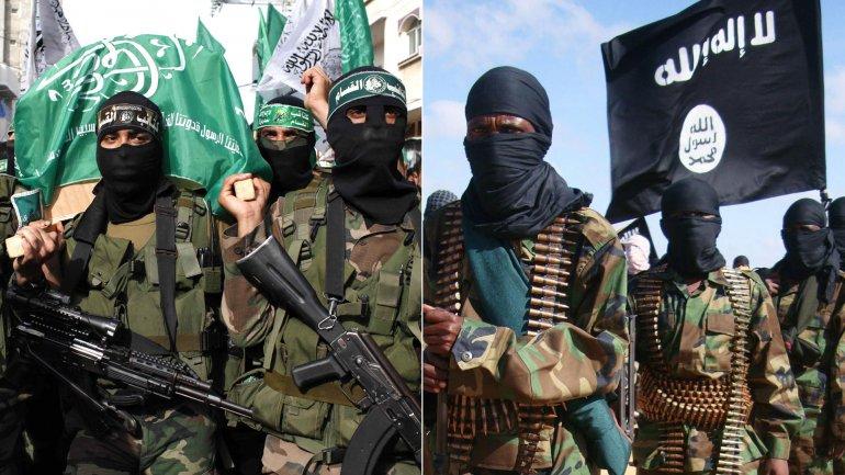 La peligrosa alianza entre Hamas y el Estado Islámico en la Península del Sinaí.