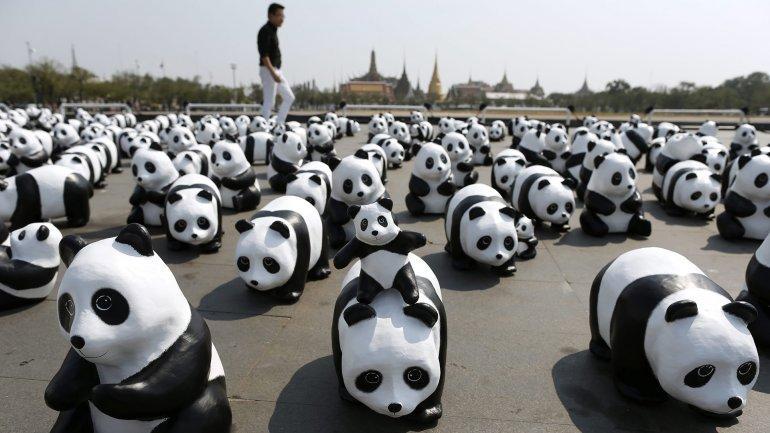 La puesta en escena fue para invitar a la reflexión sobre la necesidad de conservar el hábitat naturalde los osos panda, que están enpeligro de extinción.