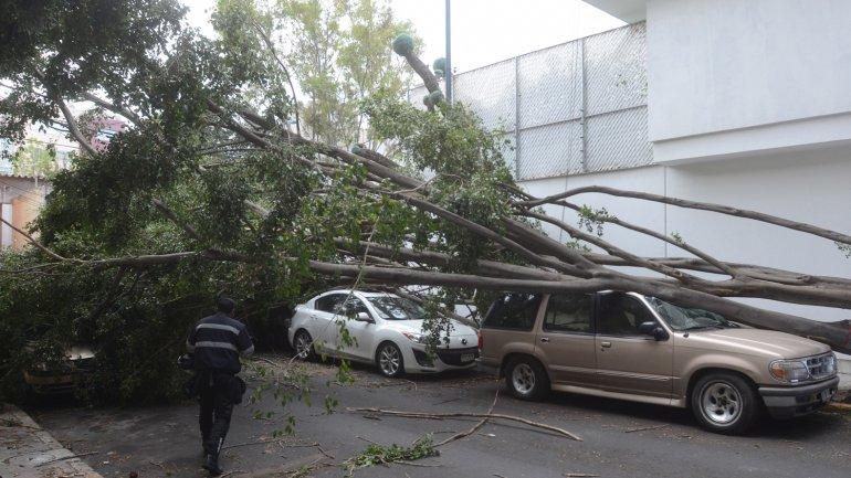 Al menos seis personas perdieron la vida a causa del mal tiempo