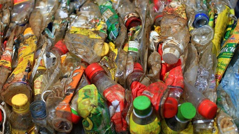 La bacteria descompone el plástico conocido como PET