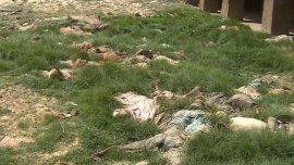 Los chiitas masacrados fueron enterrados en una fosa común y la evidencia fue destruida