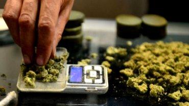 Alemania evalúa legalizarlo sólo para uso medicinal, no recreativo
