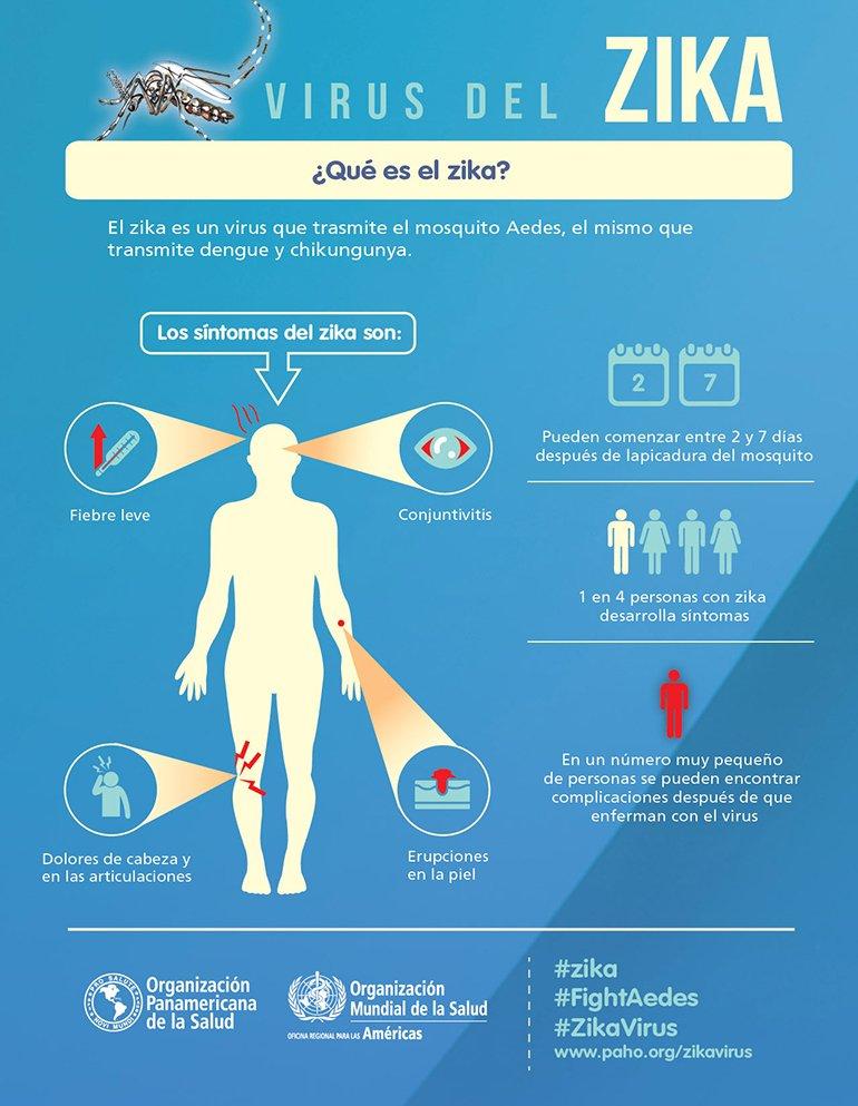 Infografía: virus del zika